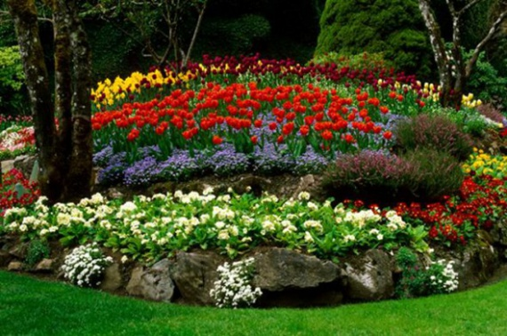 Цветы и клумбы: Удобрения для садовых цветов