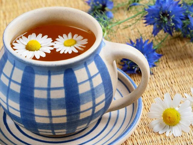 Цветы и клумбы: Полезные свойства ромашки