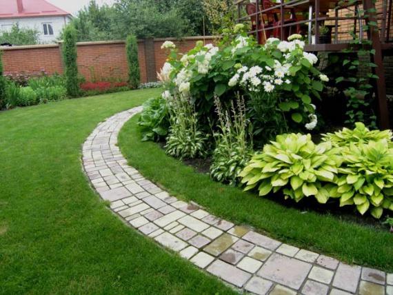 Цветы и клумбы: Многолетние цветы для клумбы на даче и в саду