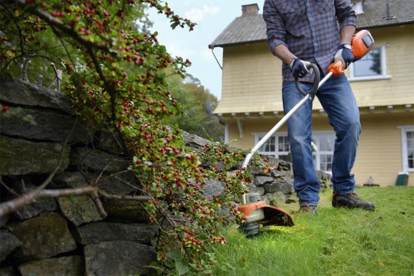 Техника и инструменты для дачи: Техника для дачи и огорода