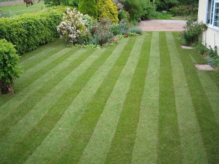 Ландшафтный дизайн: Каток для газона своими руками