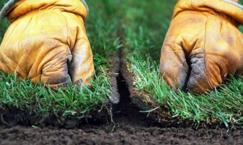 Ландшафтный дизайн: Укладка рулонного газона своими руками