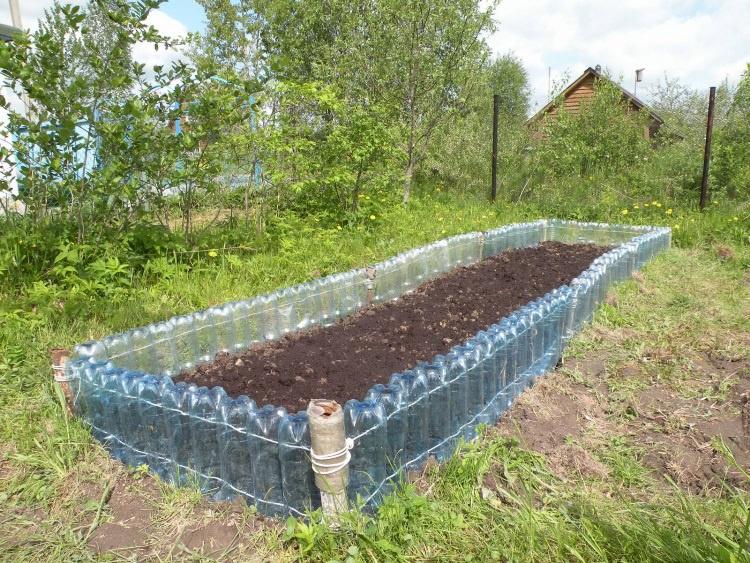 Огород: Баклажаны в теплице и открытом грунте