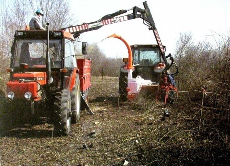 Сад: Как удалить поросль вишни