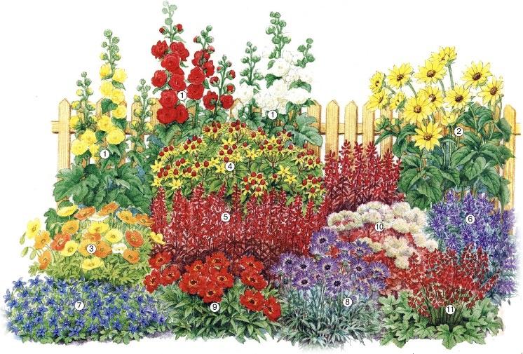 Цветы и клумбы: Миксбордер