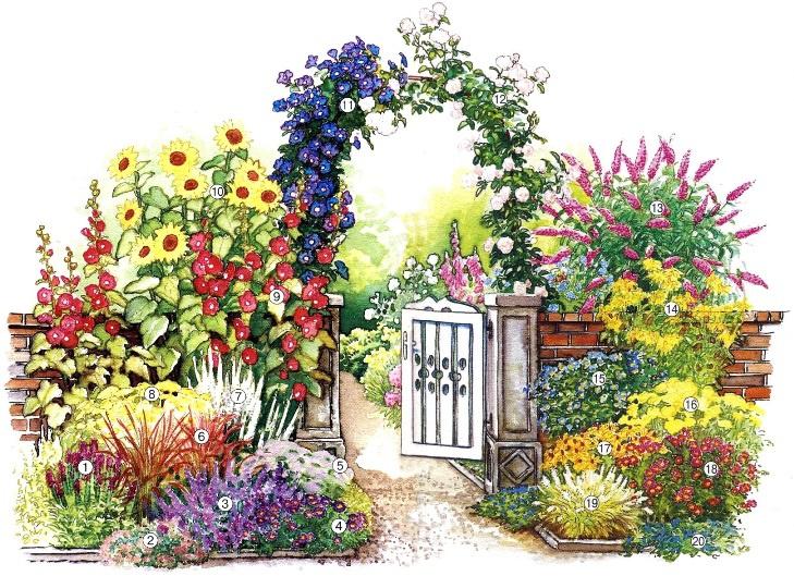 Цветы и клумбы: Схема посадки цветов у калитки