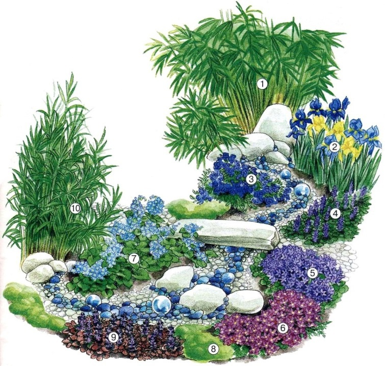 Цветы и клумбы: Схема посадки
