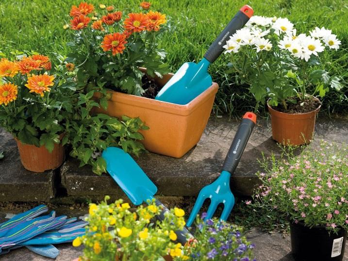 Техника и инструменты для дачи: Садовые инструменты для дачи