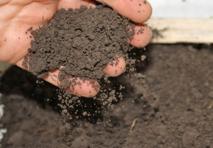 Цветы и клумбы: Почва