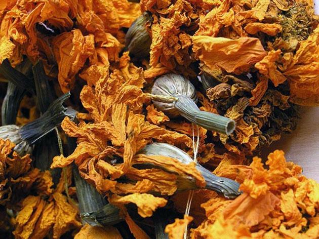 Цветы и клумбы: Засушеные бутоны бархатцев