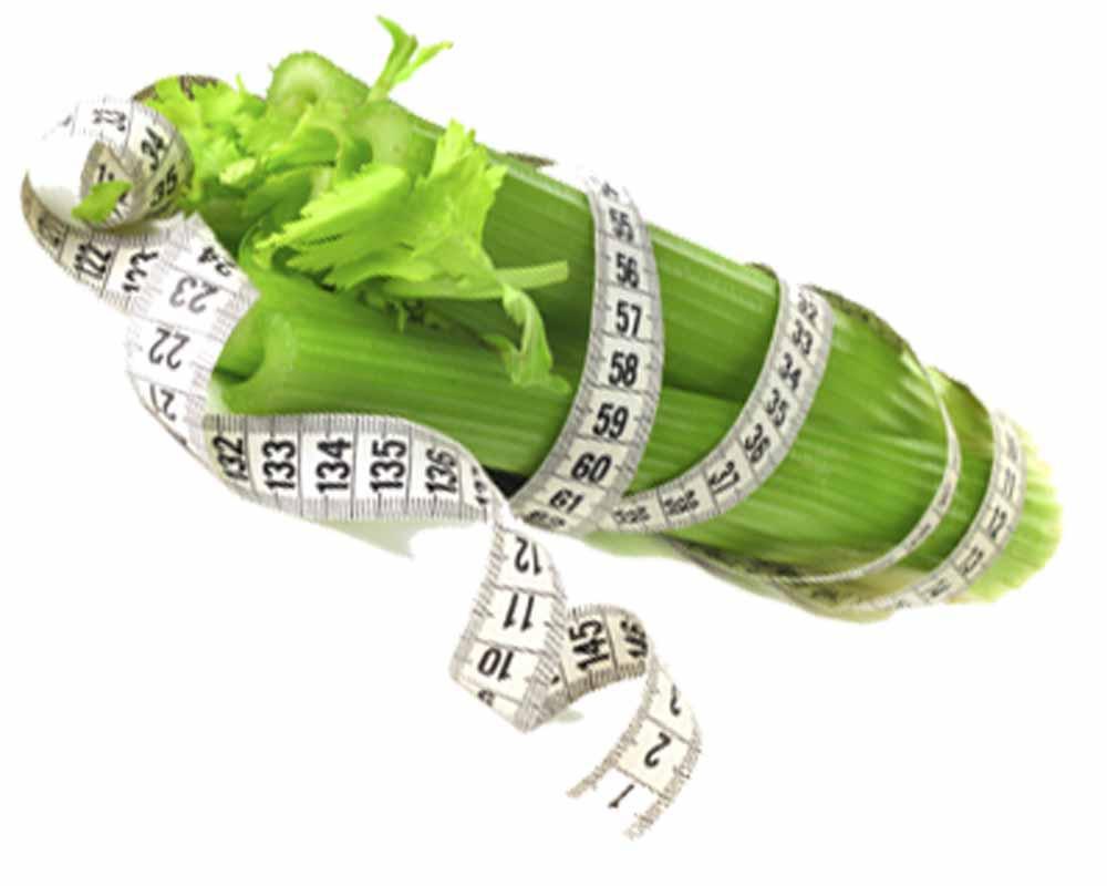стебель сельдерея для похудения