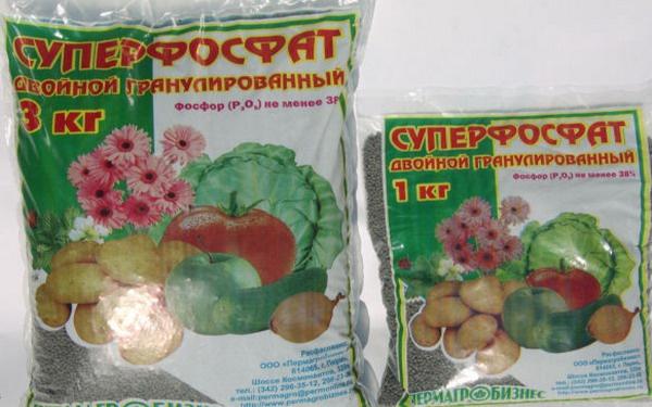 Огород: Суперфосфат для свеклы