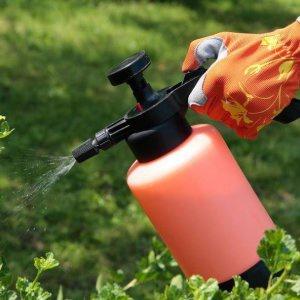 Цветы и клумбы: Обработка инсектицидами посадок вблизи канн