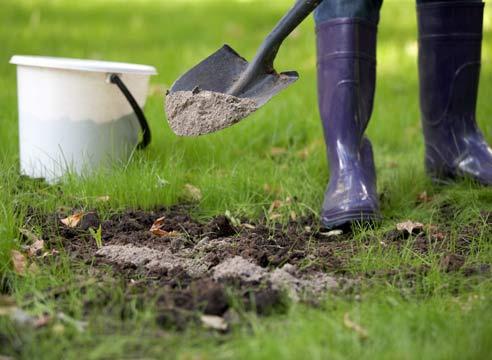 Сад: Удобрение почвы перед посадкой