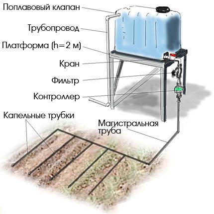 Техника и инструменты для дачи: Схема капельного полива