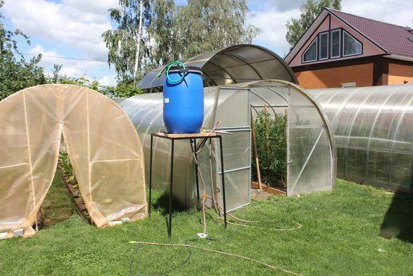 Техника и инструменты для дачи: Капельный полив картофеля в теплице