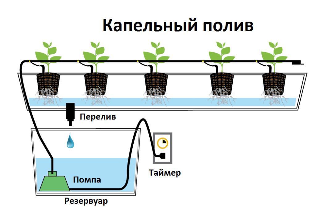 Техника и инструменты для дачи: Капельный полив для гидропоники