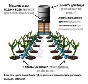 Техника и инструменты для дачи: Монтаж капельного полива