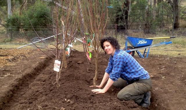 Сад: осенняя подкормка