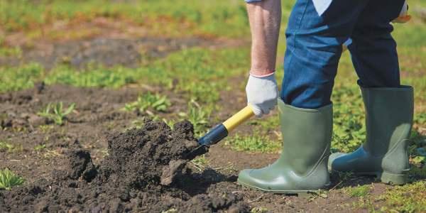 Огород: перекапывание земли