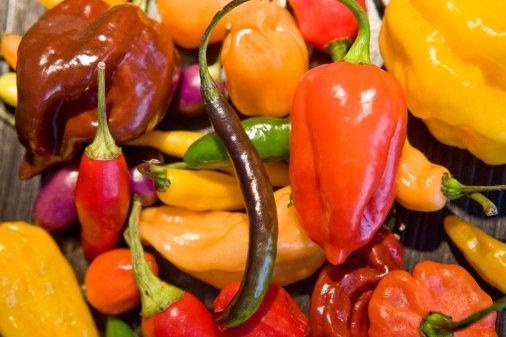 Огород: горький и сладкий перец