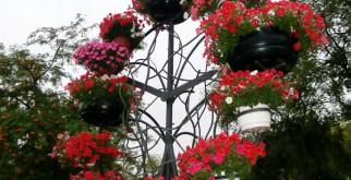 Вертикальные клумбы своими руками — великолепное украшение дачи