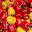 Как зимой выбрать болгарский перец?